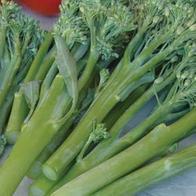 Broccoli BROCCOLI (Stem) Kalibroc F1#, Frö till Broccoli