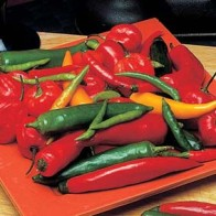 Chili PEPPER (Hot) Caribbean B...-Frö till Chili