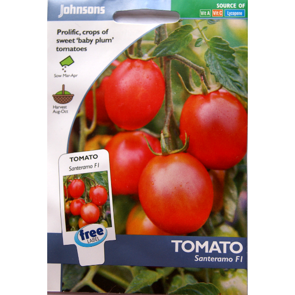 Tomat TOMATO Santeramo F1-Frö till Tomat