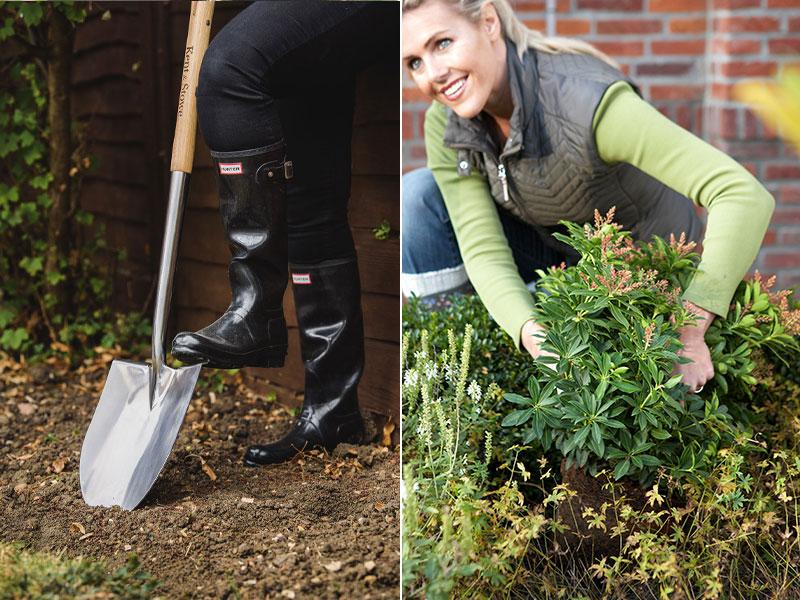 plantering-av-buskar-pa-hosten.jpg