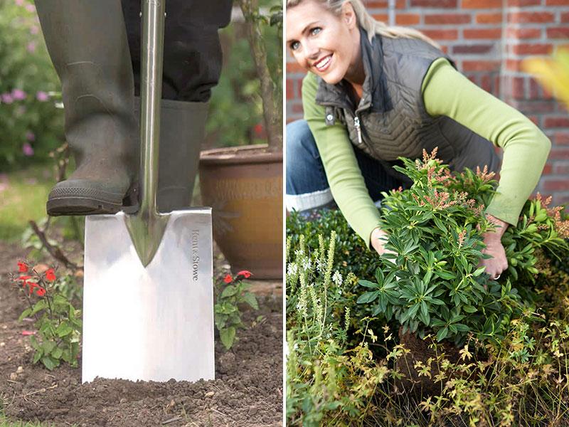 Hur länge kan man plantera på hösten?