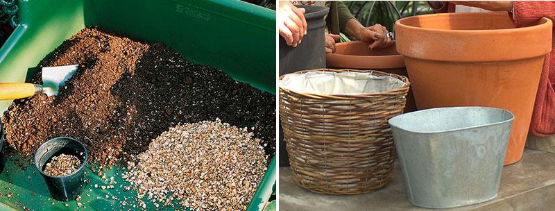 Jord och krukor till plantering av höstlökar i kruka