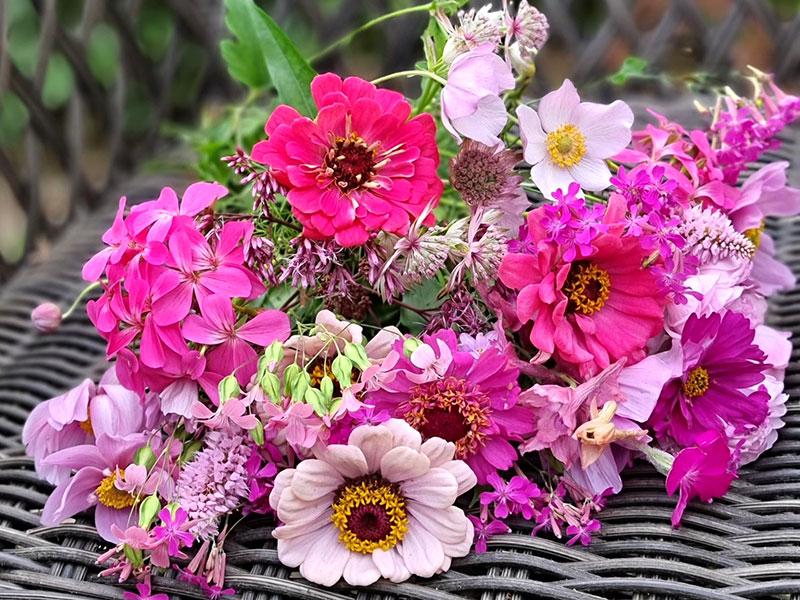 olika rosa blommor i bukett