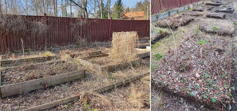 före-efter odlingsbäddar borta