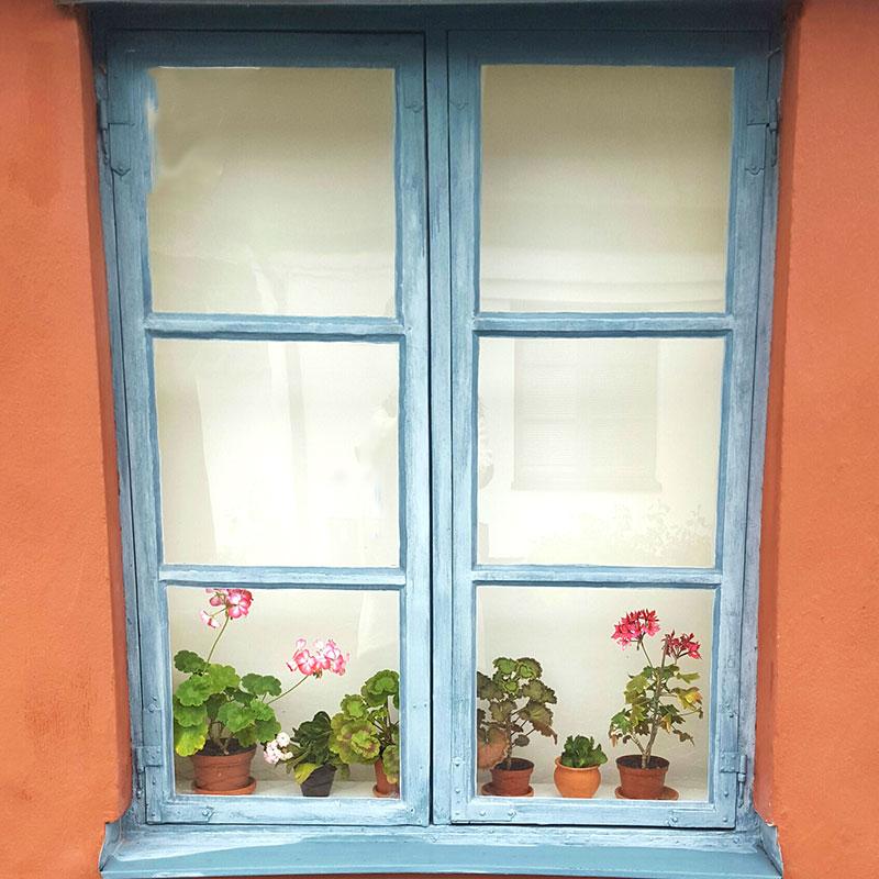 Fönster med pelargoner sett utifrån