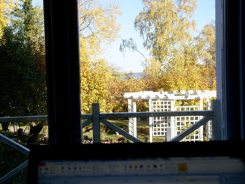 Utsikt från hemmakontoret över trädgården