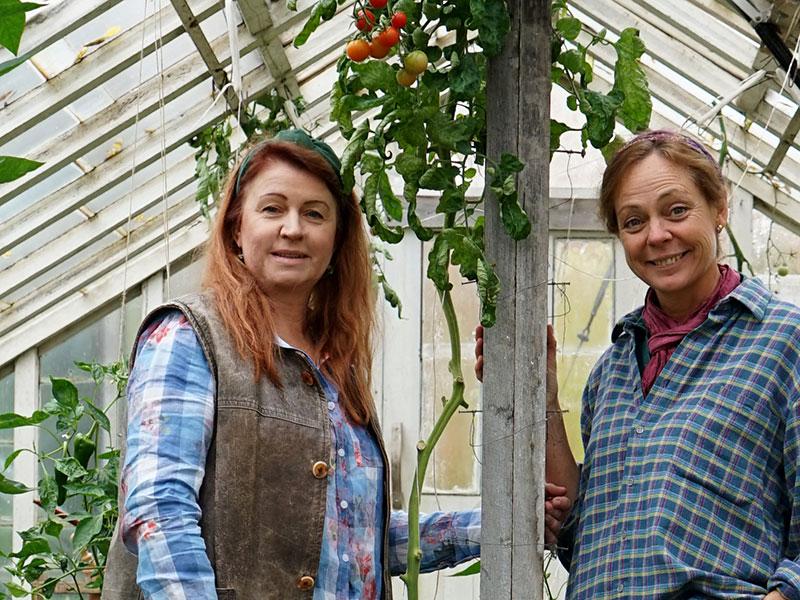 Lena Ljungquist och Karin Elmberg i växthuset