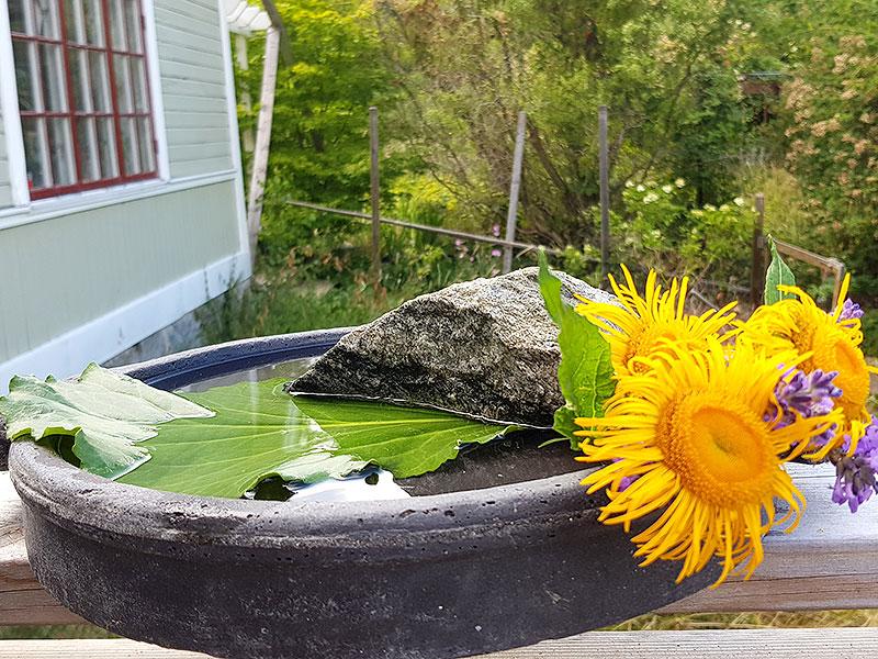 Bi-spa för vatten till insekterna