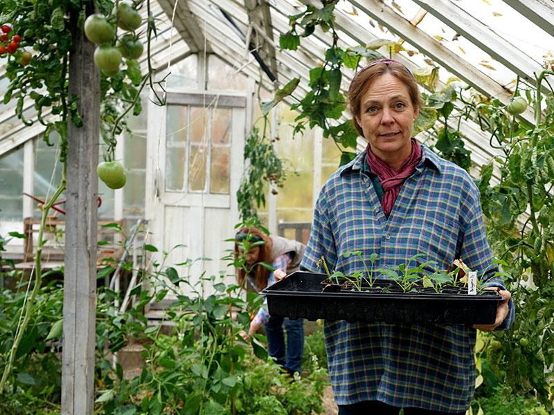 karin Elmberg bär på en bricka med små frösådder