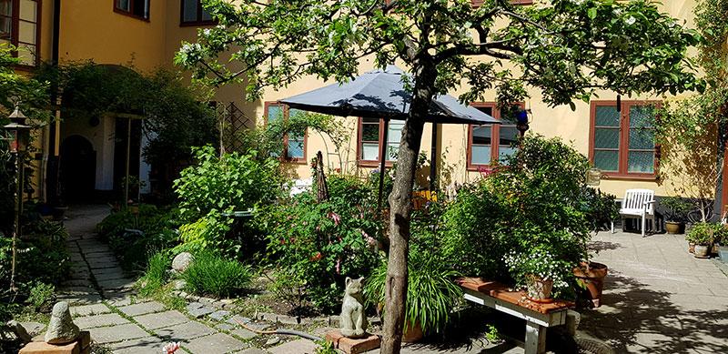 Blommande innergård i Stockholm
