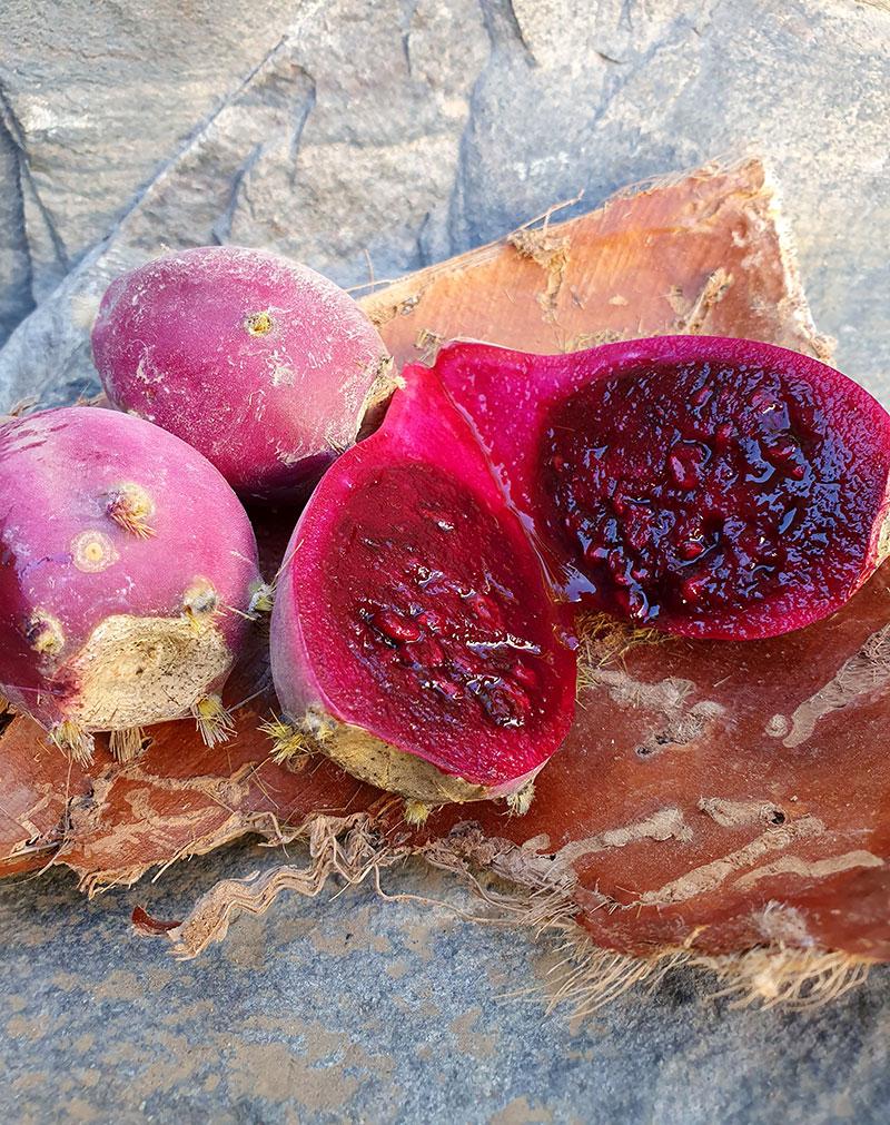 Frukterna hos fikonkaktus