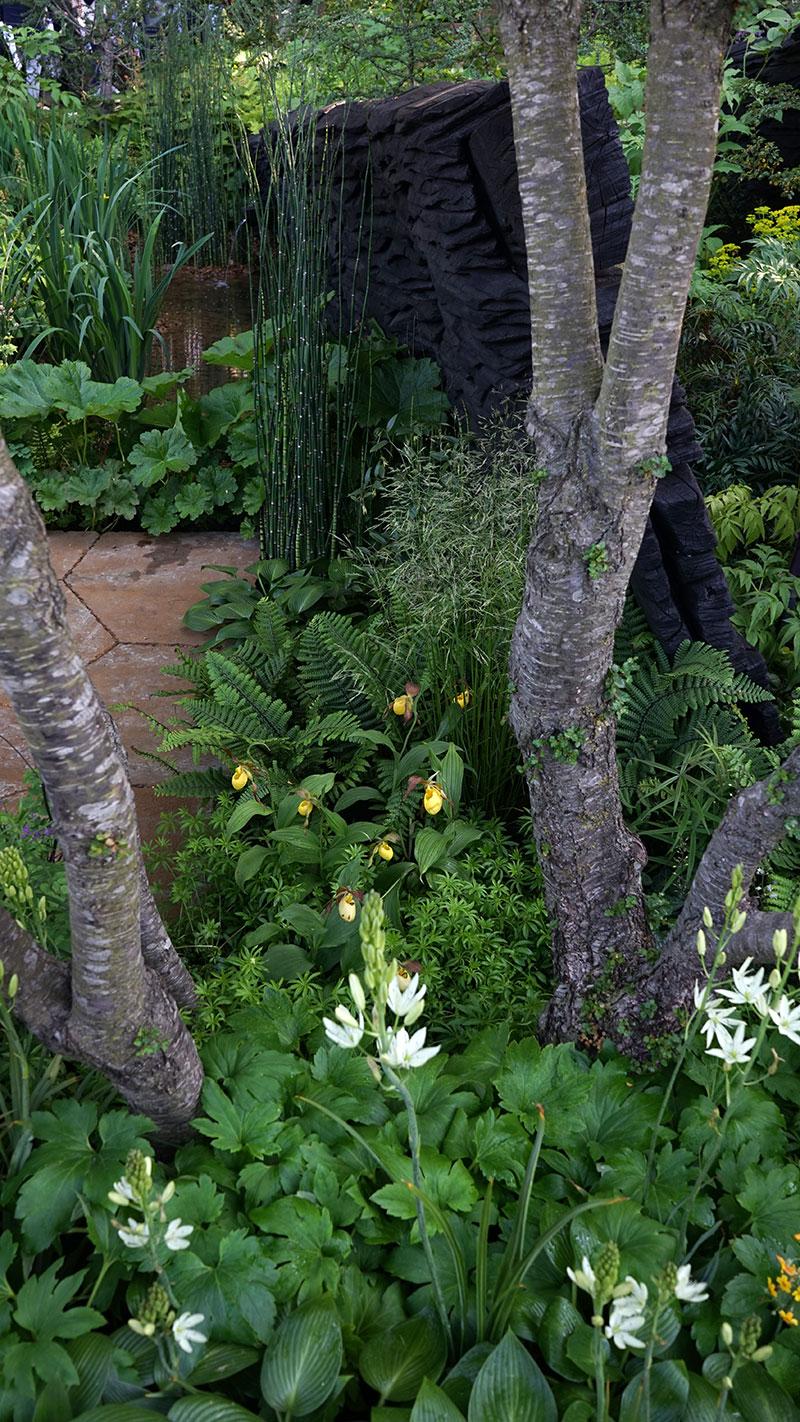 En av trädgårdarna i utställningen på Chelsea FLowershow