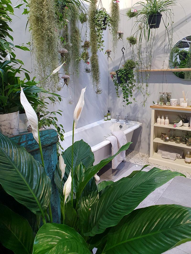 Gröna växter i badrummet