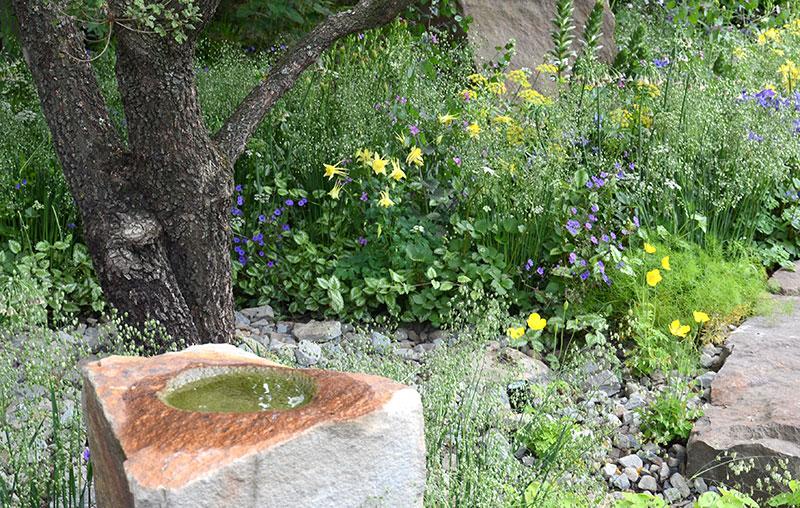 Naturlig trädgård med fågelbad för biologisk mångfald