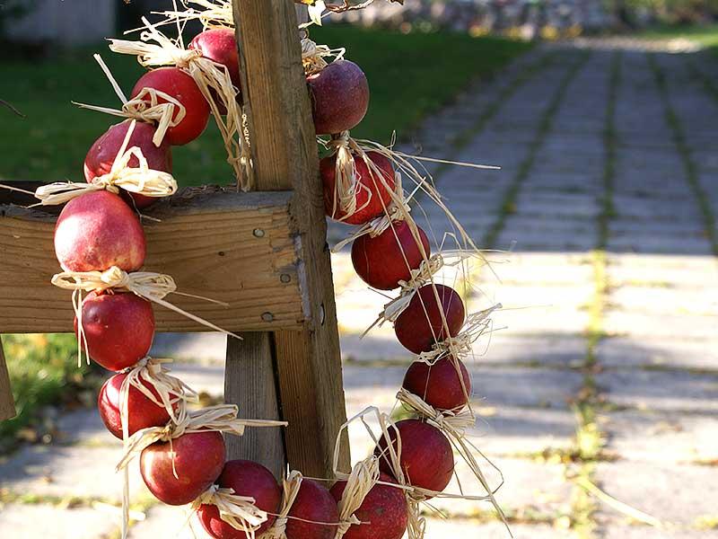 Krans av äpplen med bastrosetter