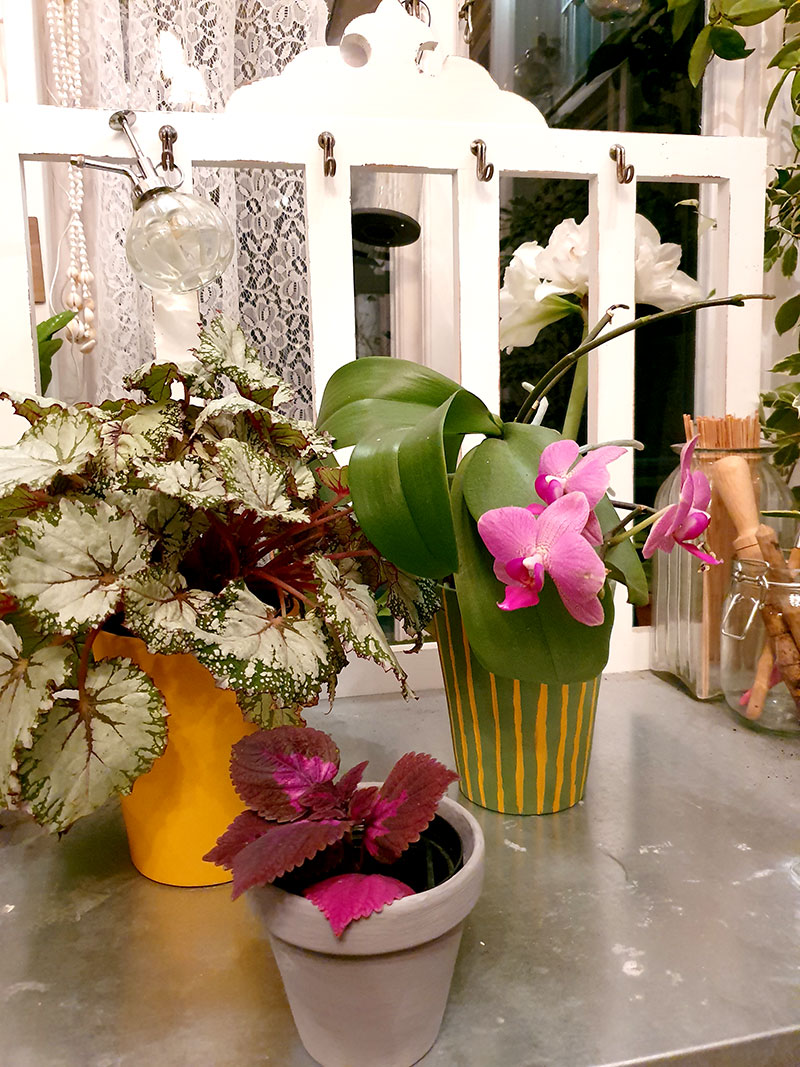 Blomkrukor och ytterkrukor målade med mineralfärg