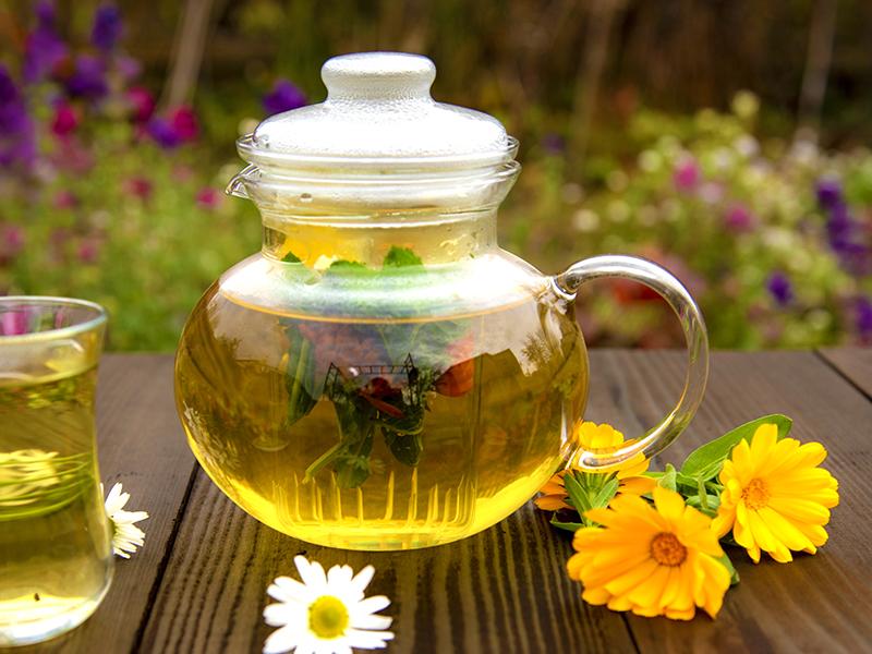 Kanna med hemodlade örter till te