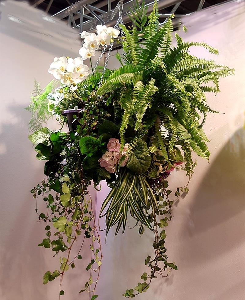 Hanging basket med ormbunke, orkide och primula
