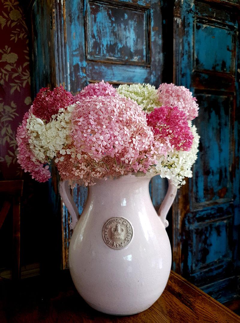 Rosa och vita hortensiablommor i rosa vas