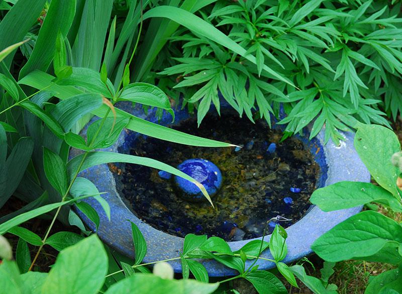 Fågelbad i trädgård