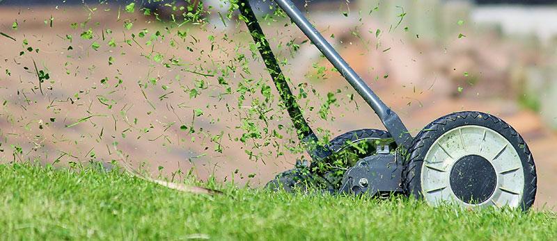 Klippning av gräsmatta