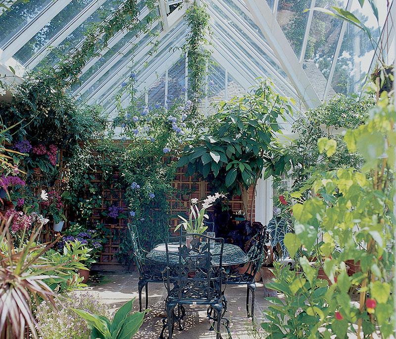 Växthus sensommar