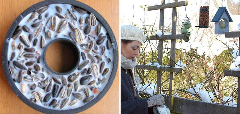 Hemmagjord fågelmat och utfodring av fåglar