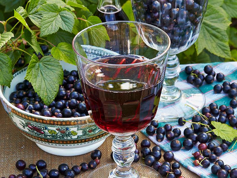 Likör av svarta vinbär