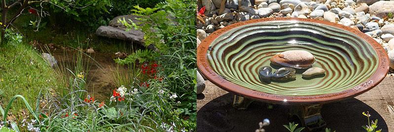 Vatten i trädgård damm och fågelbad