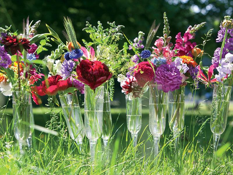Ängskänsla med blommor i vas