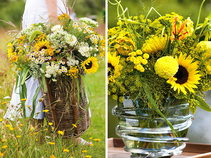 Plockade blommor till buketter