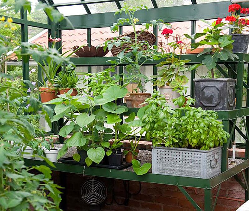 arbetsbord i växthus