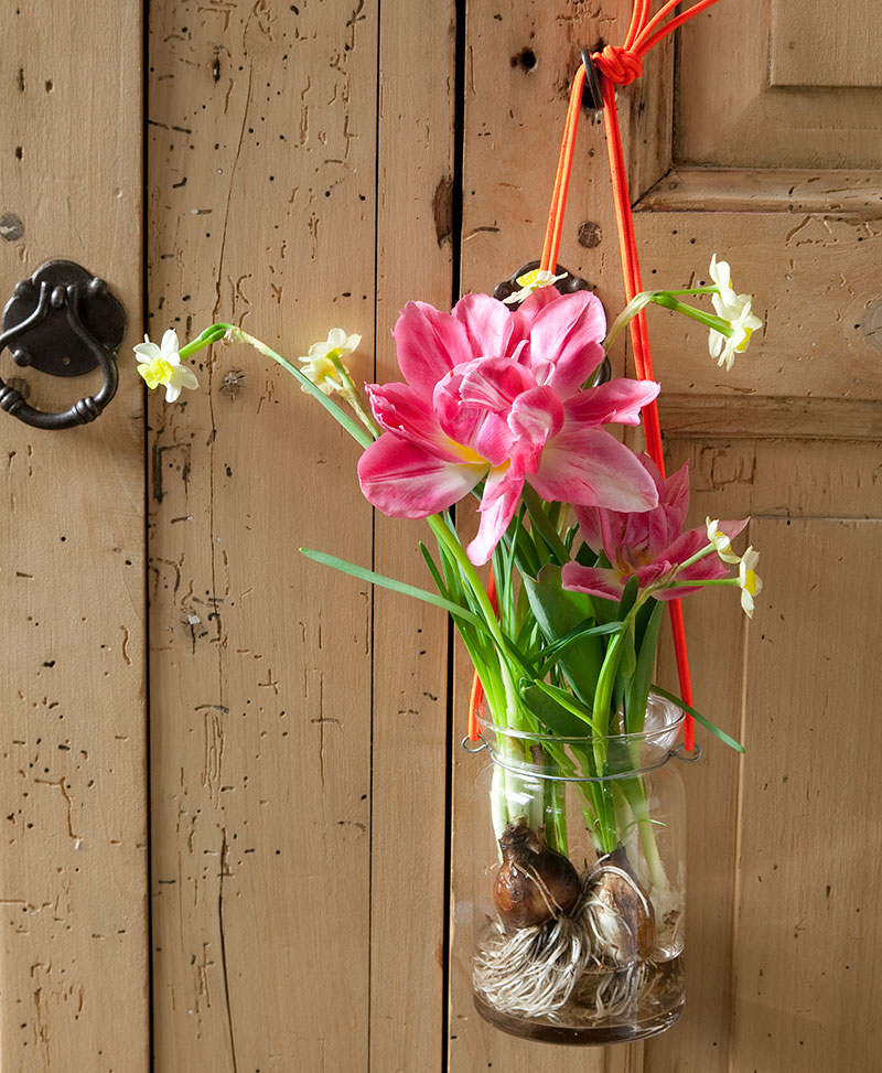 Hängande vas med tulpan på dörr