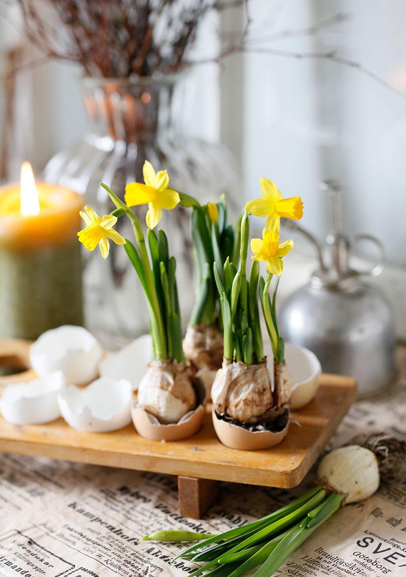Påskarrangemang med påsklilja och ägg