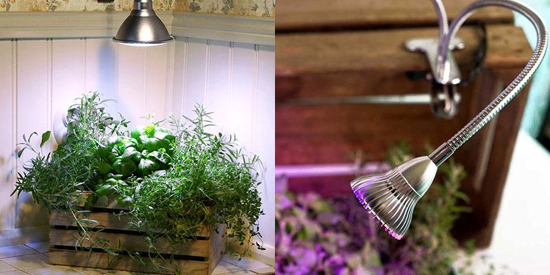 Växtlampa i kök Primula