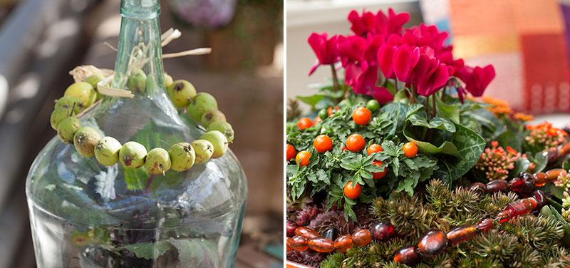 Dekoration med paradisäpplen och krukväxter cyklamen prydnadspaprika och kalanchoe