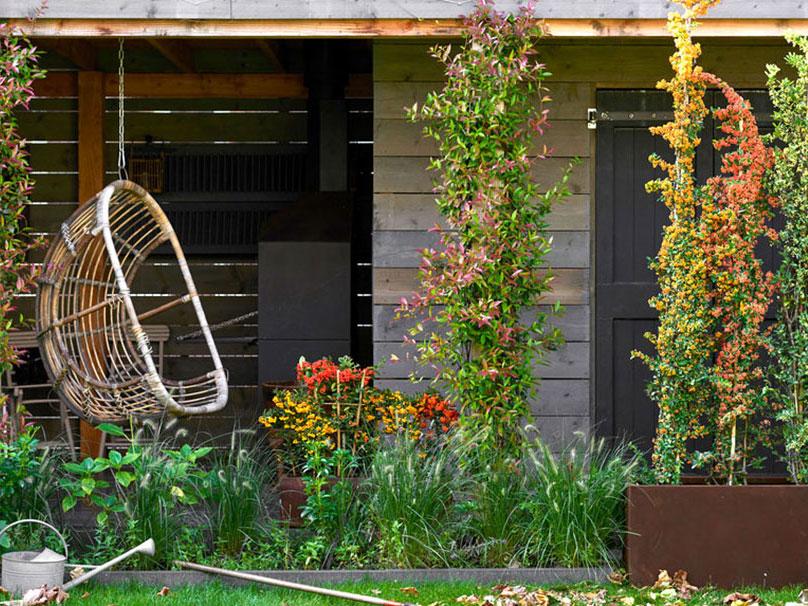Trädgård i oktober