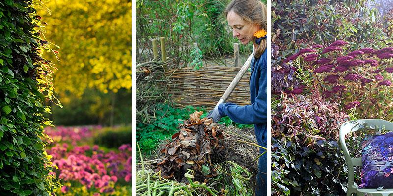 trädgård i oktober med kompostering