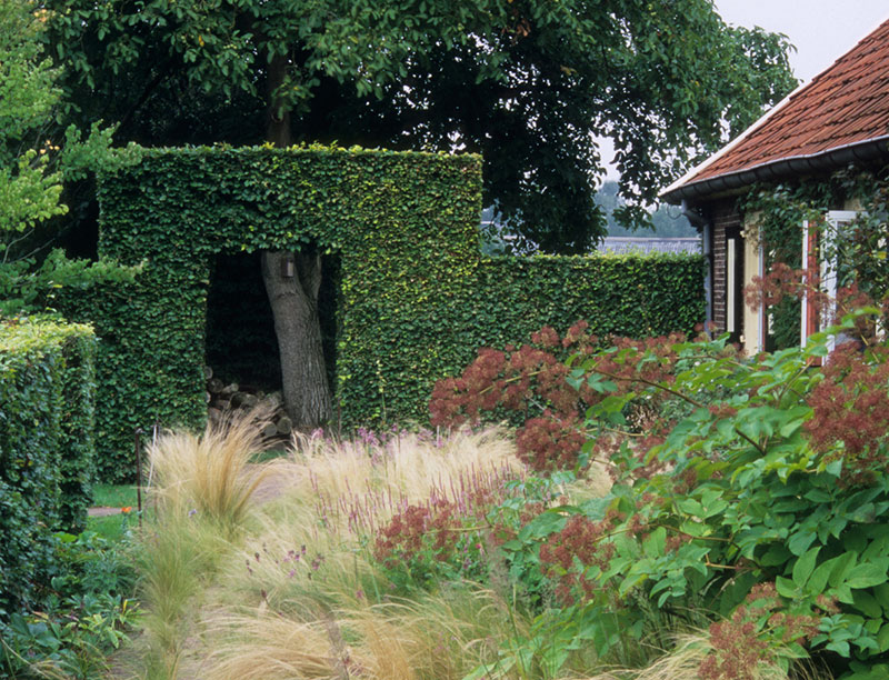 Välplanerad trädgård med häckar
