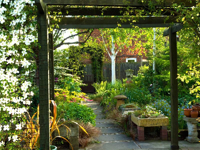 Planerad trädgård