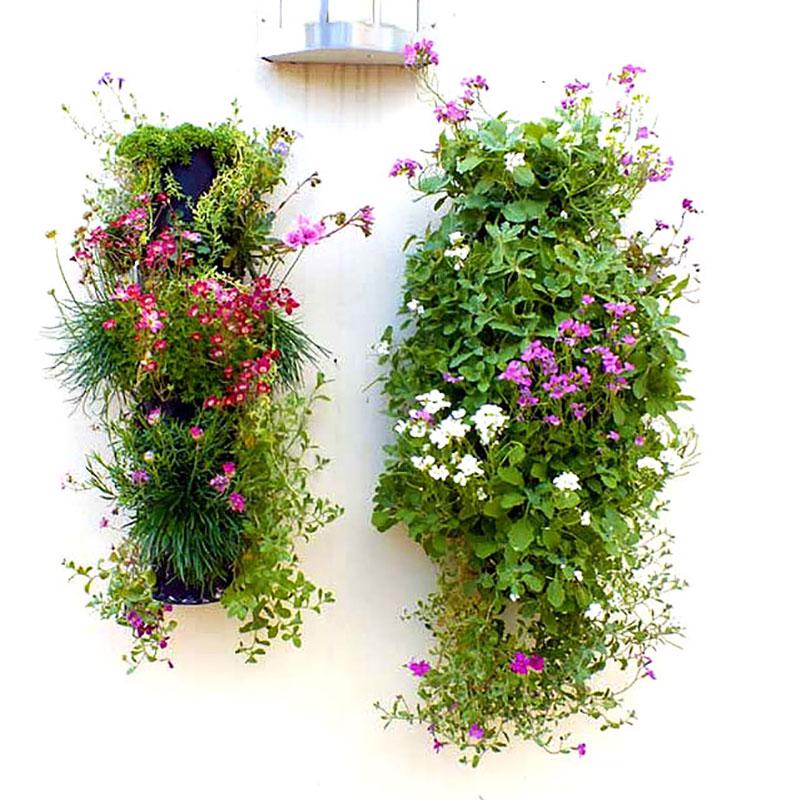 Väggodling med blommor utomhus