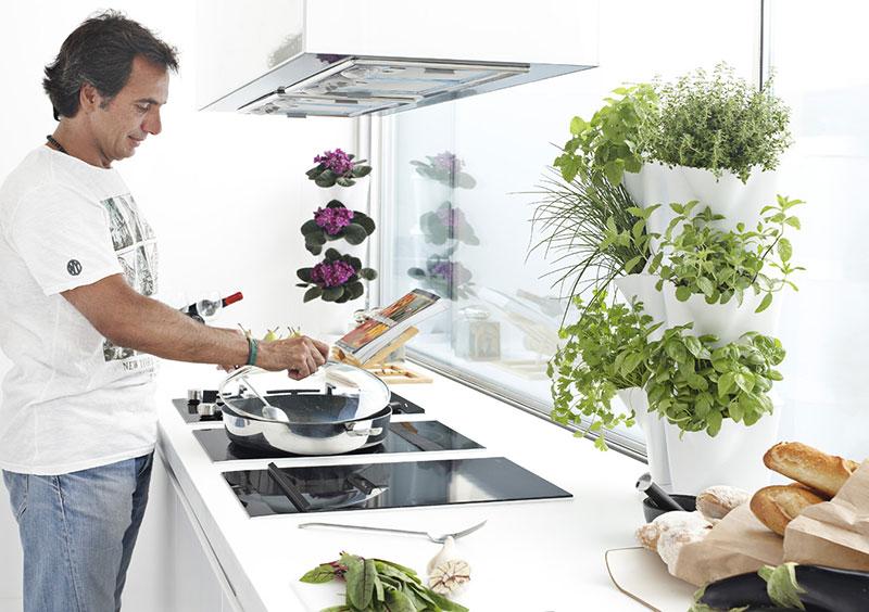 Väggodling i köket med örter i Minigarden Corner