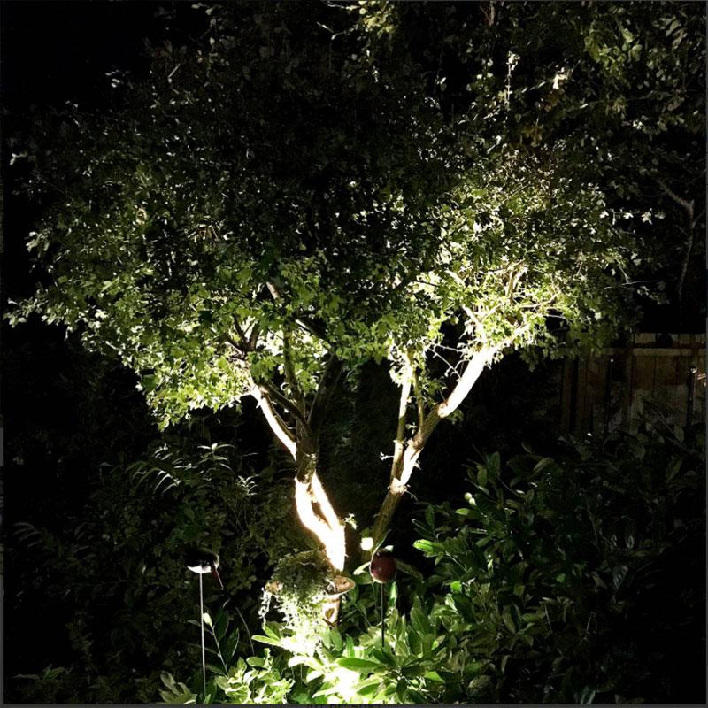 Utebelysning av träd med spott