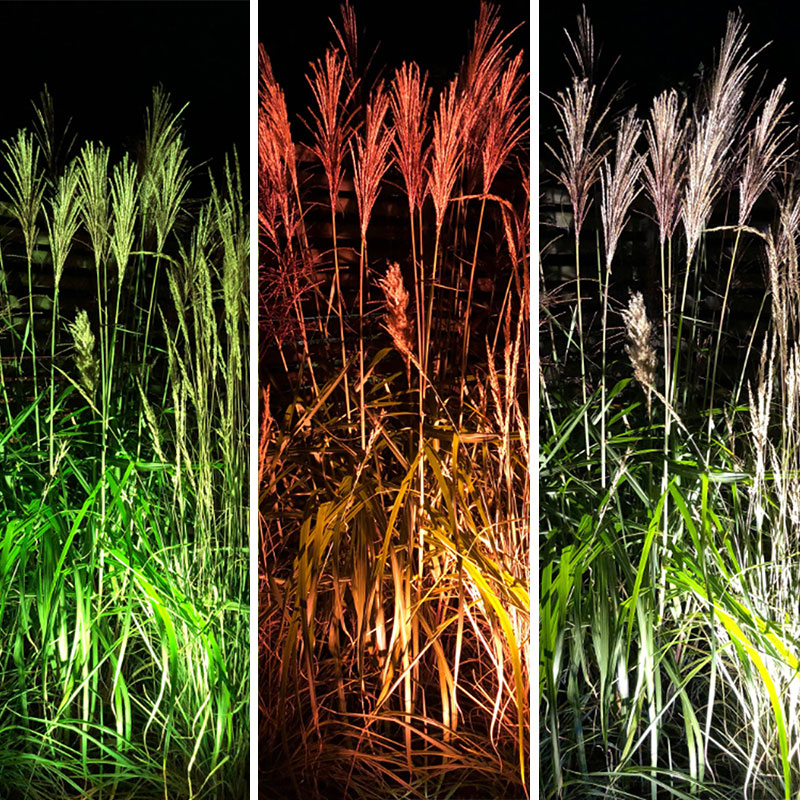Färgfilter på utebelysning i trädgården för variation