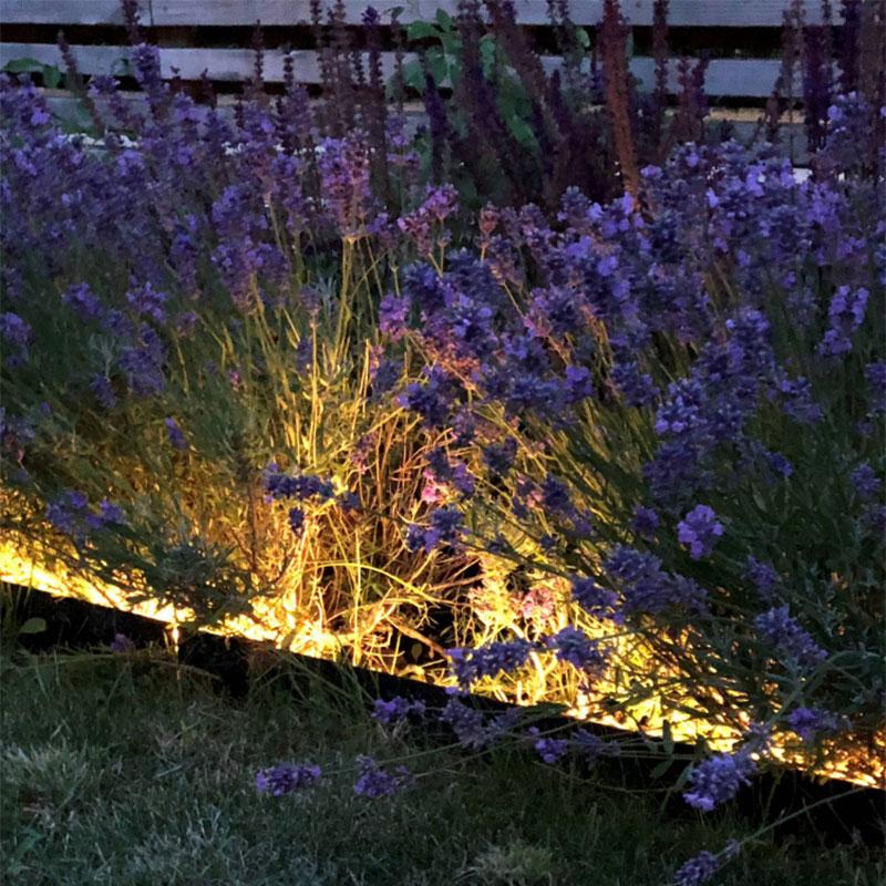 Belysning längs rabatt med ljusband