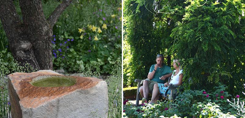 Fågelbad i trädgården och sittplats under klätterväxt blåregn