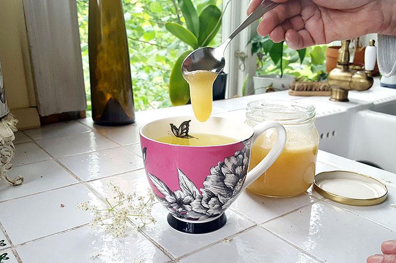 Honung hälls i kopp med fläderblomste
