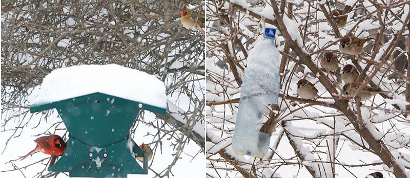 Fågelbord och matstation till småfåglar i vinter