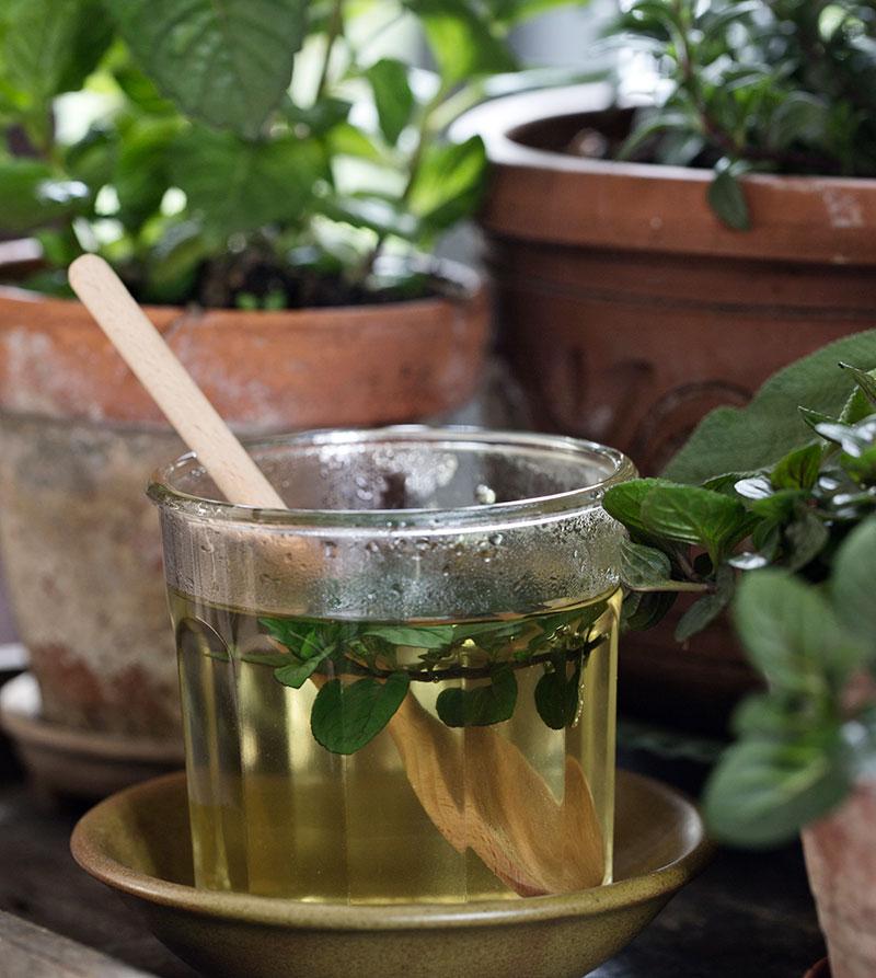 te med hemodlade örter