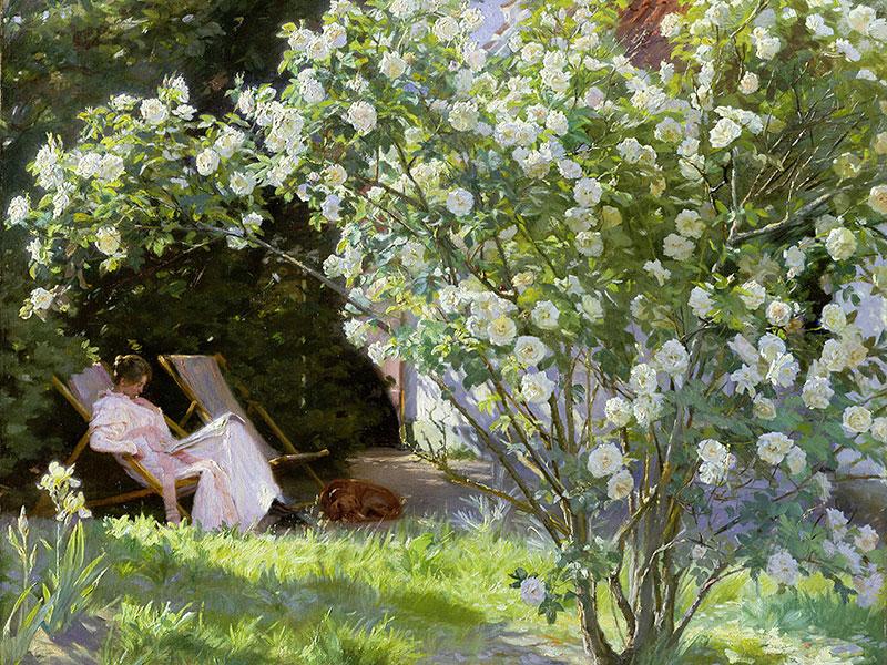 Marie i trädgården konstverk Rosa Alba Maxima